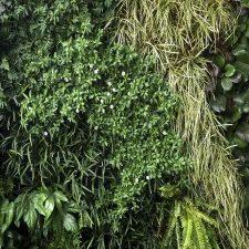 Jardines verticales Innova Jardín durabilidad