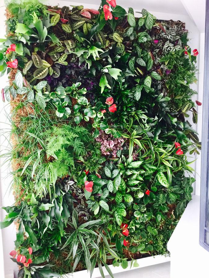 jardines-verticales-interior-particulares03