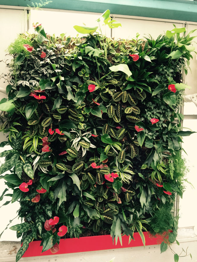 jardines-verticales-interior-particulares05