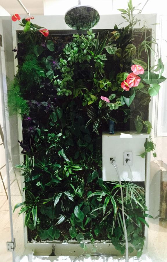 jardines-verticales-interior-particulares06
