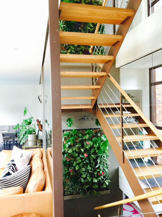 jardines-verticales-interior-particulares07