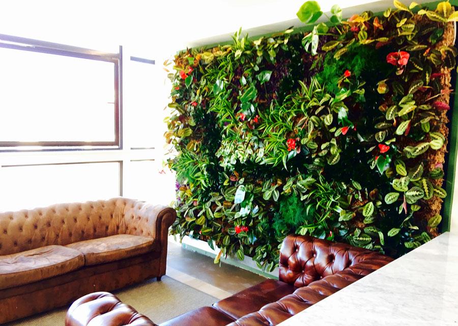 jardines-verticales-interior-particulares08