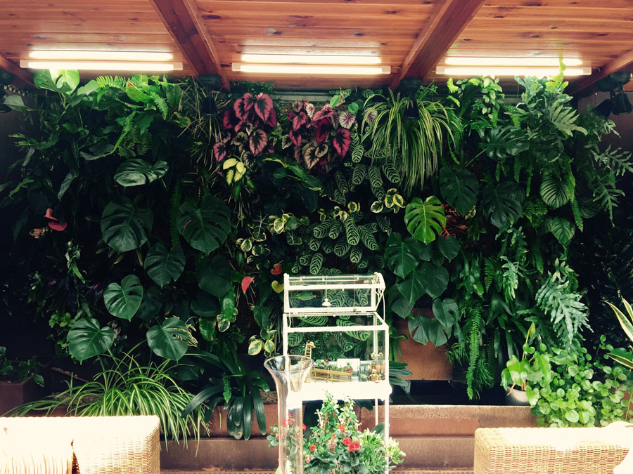 jardines-verticales-interior-particulares09