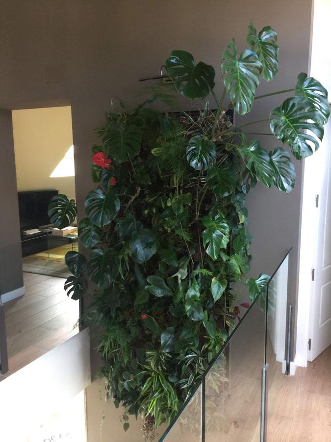 jardines-verticales-interior-particulares10